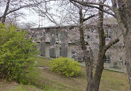 tokyo_seibu_image13_190417